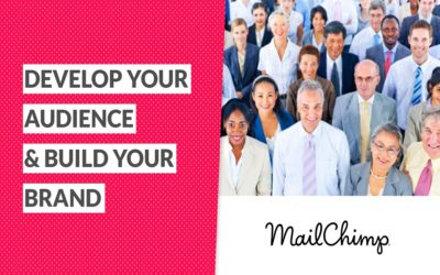 MailChimp Webinar Recap: Develop Your Audience & Build Your Brand